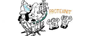 Proteiinikuva Ari Paloviidan blogitekstissä